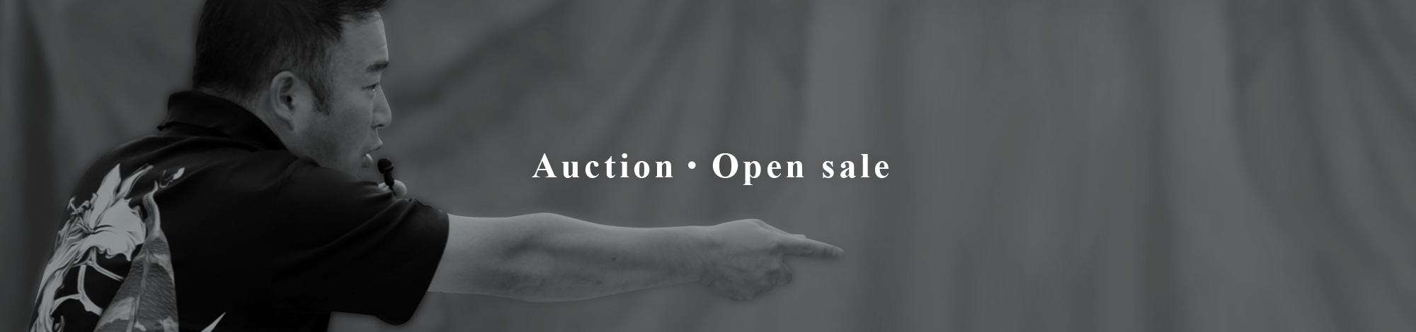 Auction Spot sale fair