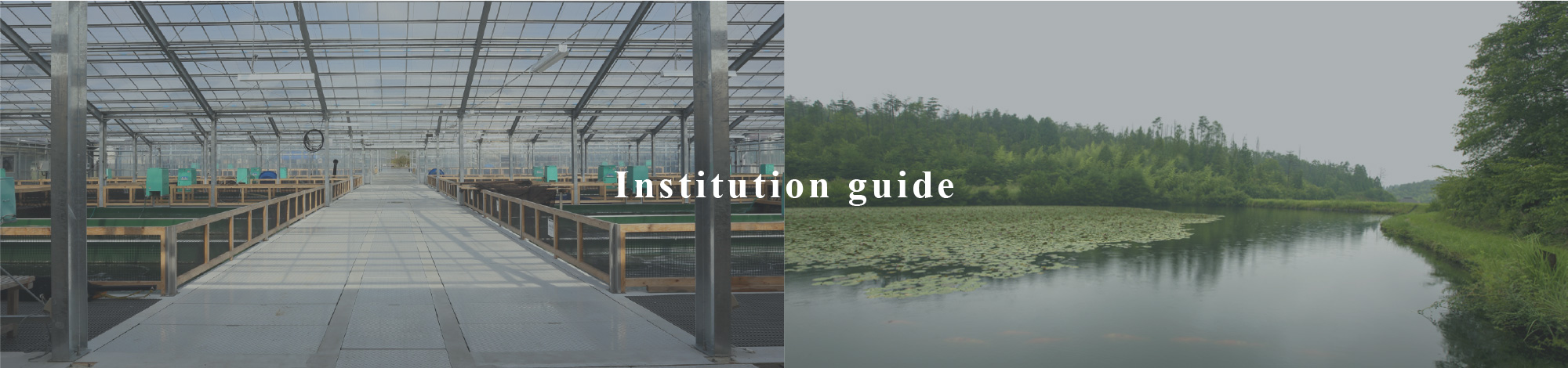 Institution guide
