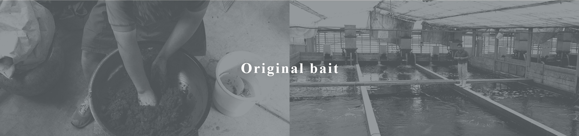 Original bait