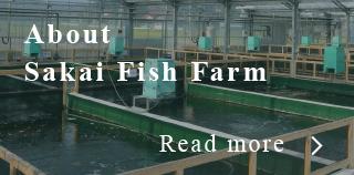 About Sakai Fish Farm