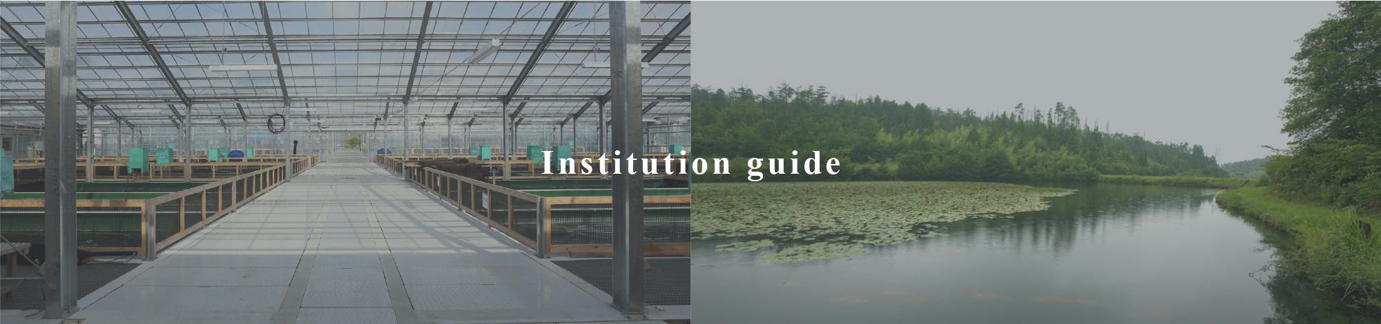 Institution guide